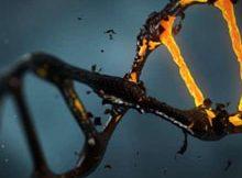 دانلود پاورپوینت بیماری ها و سندروم های ژنتیکی 6
